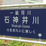 緑が綺麗!石神井川ウォーキング(小平 鈴木遺跡〜隅田川)。