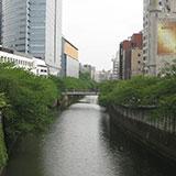 新緑の春!!目黒川ウォーク(池尻遊歩道〜天王洲アイル・東京湾)。