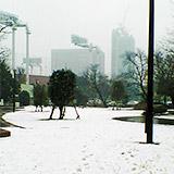 首都圏 雪に弱すぎィ…!