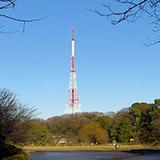 鶴見川&三ツ池公園ウォークと横浜 旭変電所の超電導ケーブルの話。