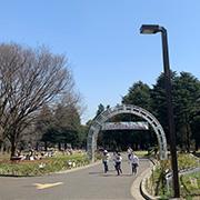 原宿駅新改札口と表参道界隈。